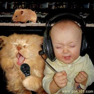 funny_singer_cat_baby